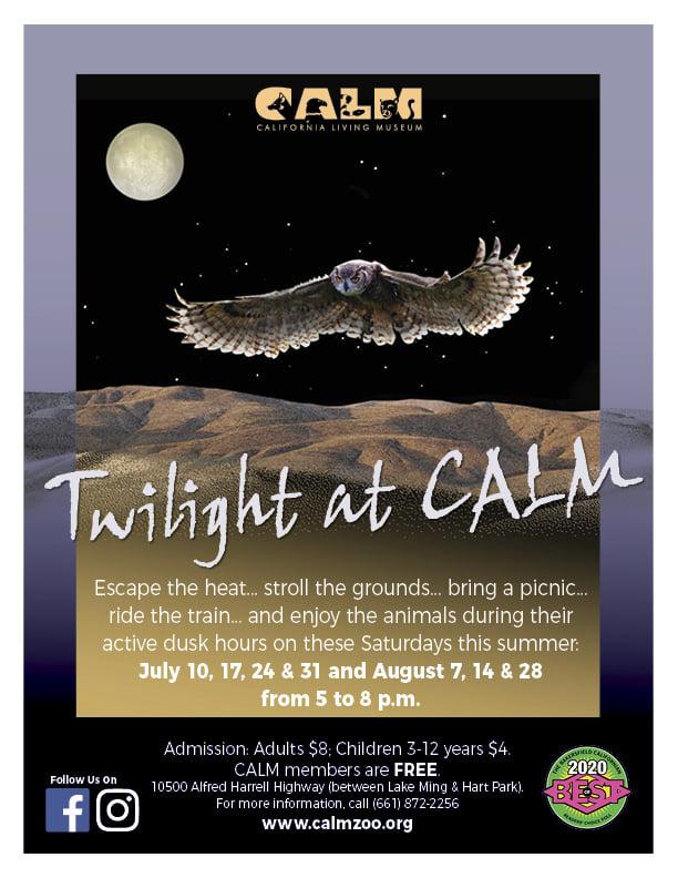 Twighlight Flyer